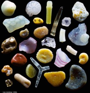 Sand Particle Magnified