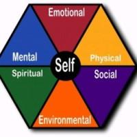 Understanding Wellness