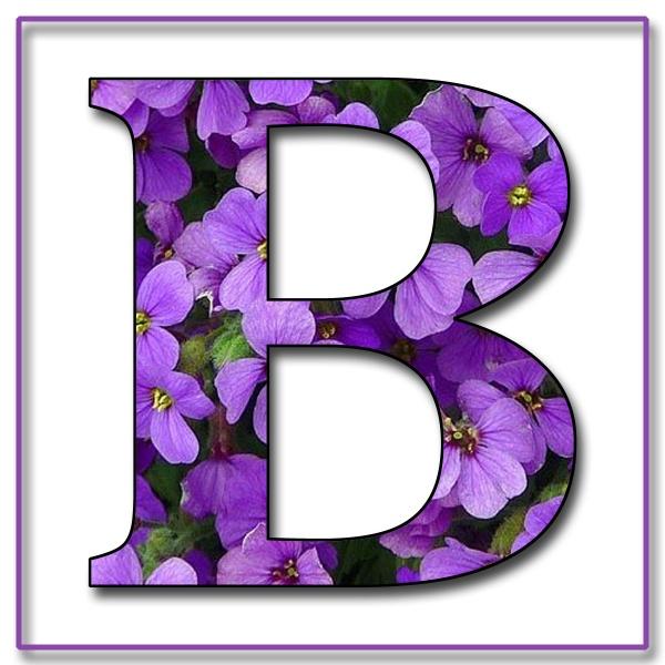 Capital Letter B Free Scrapbook Alphabet Purple Flowers