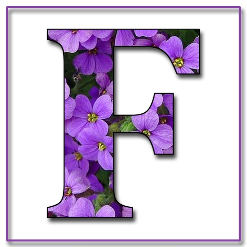 Capital Letter F Free Scrapbook Alphabet Purple Flowers